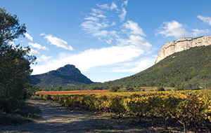 The Pic Saint Loup - France